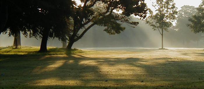 sefton-park[1]